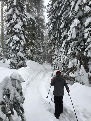 schneescooter in lappland